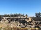 Paphos-19